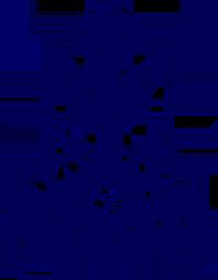 Pakistan Navy logo